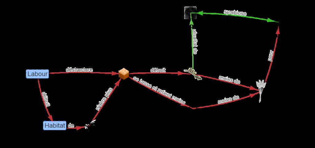 schéma-effet-du-labour-sur-le-sol
