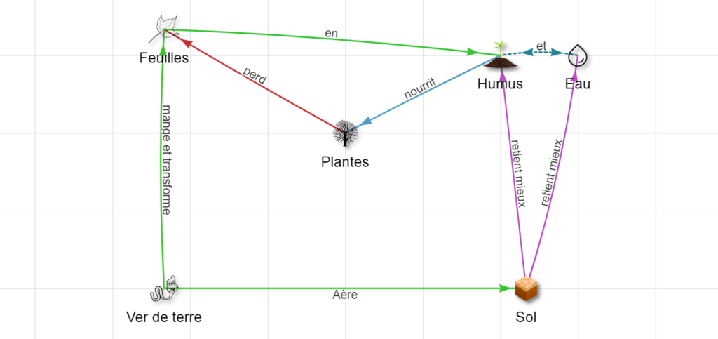 schéma montrant les interactions terre & plantes