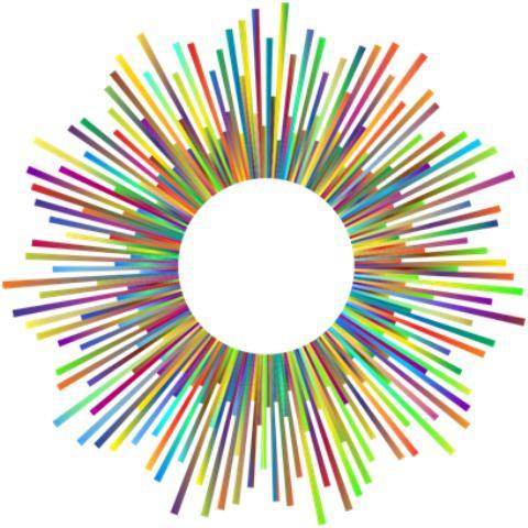 cette image nous évoque la sociocratie : un soleil dont les raysons sont multiples, de toutes les couleurs et tailles, tous en rond autour d'un cercle blanc
