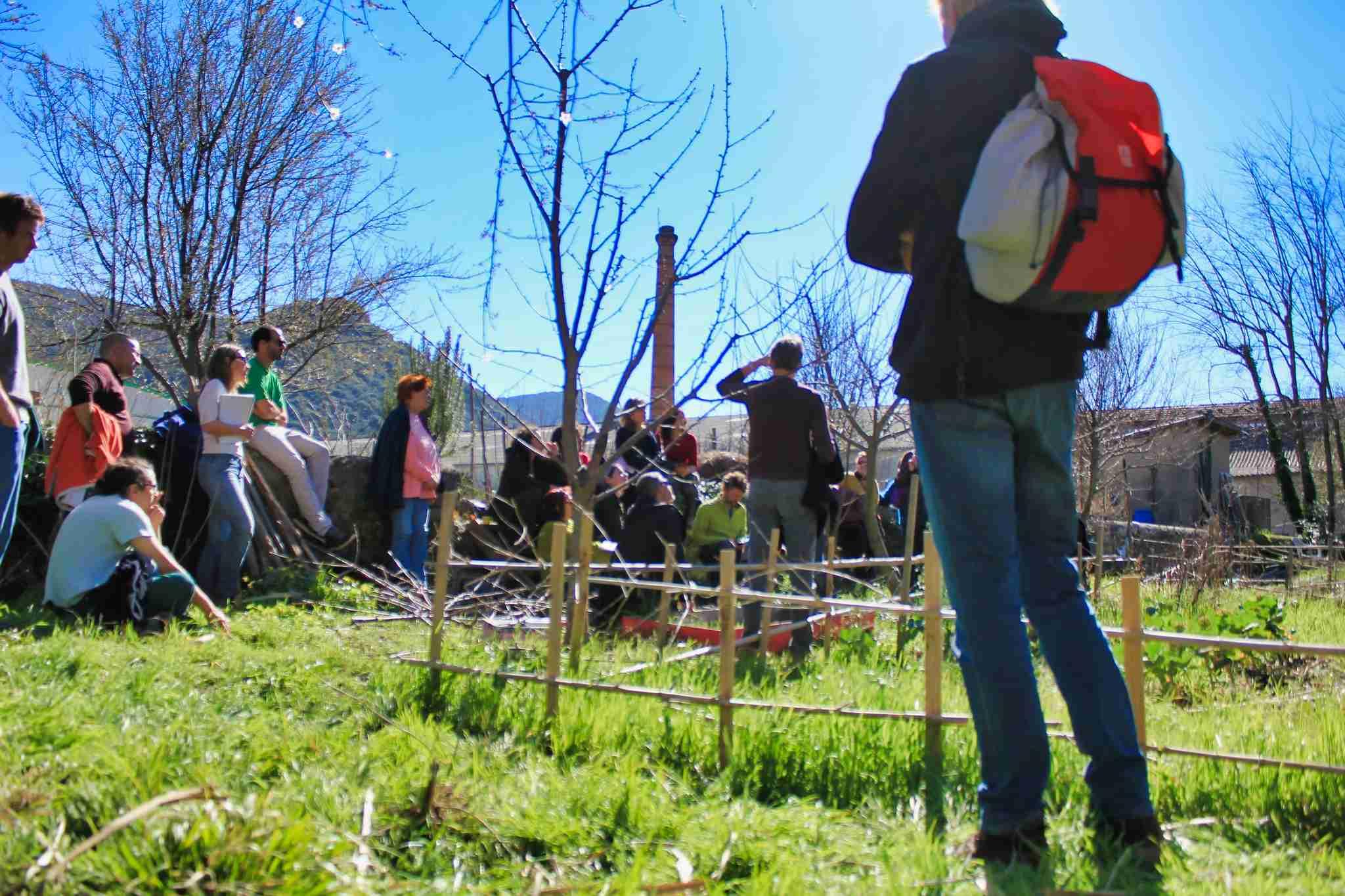 animation en plein air : atelier sur la taille douce des arbres