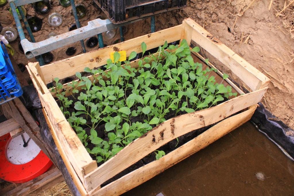 Agenda des ateliers jardinage 2019