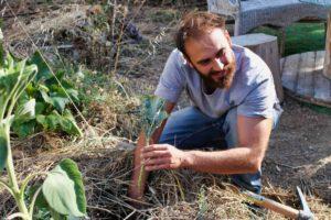 un jardinier plantant un légume avec un sourire en coin, le visage illuminé par le soleil