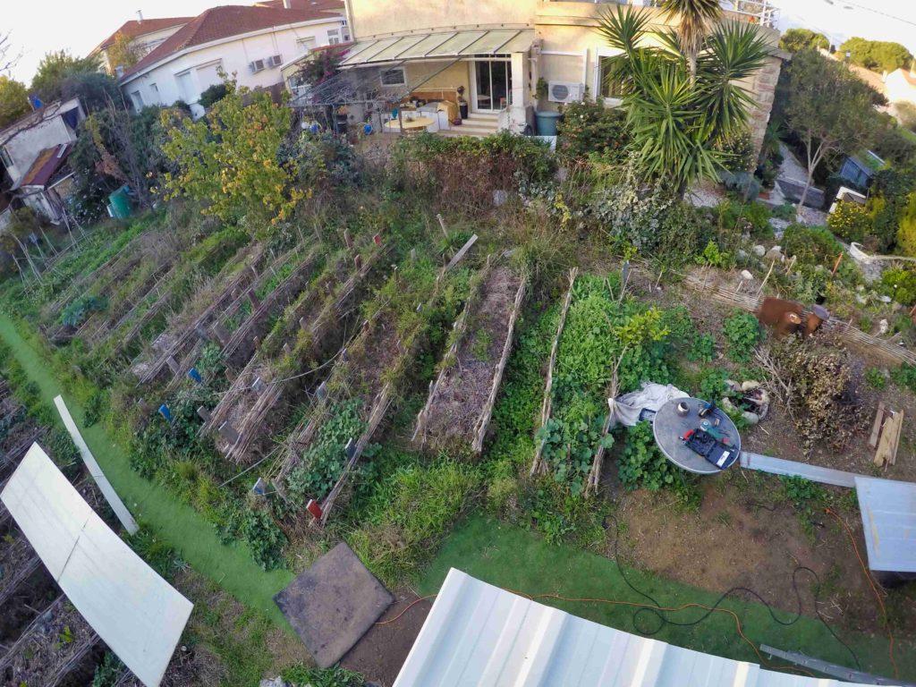 photo prise sur un toit de maison montrant comment le sol des cultures d'un jardin partagé à Béziers sont couvertes