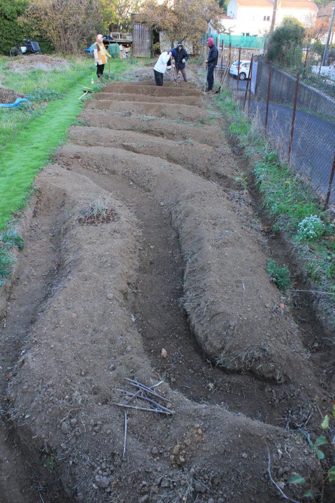 buttes en courbe de niveau keyline avec des jardiniers apprenant cette méthode au jardin partagé d'Eric