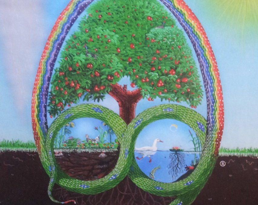 """couverture du livre """"permaculture : a designer's manual"""", par bill mollison, décrivant un serpent, un arbre, un arc en ciel, une sorte d'écosystème complet et très harmonieux"""
