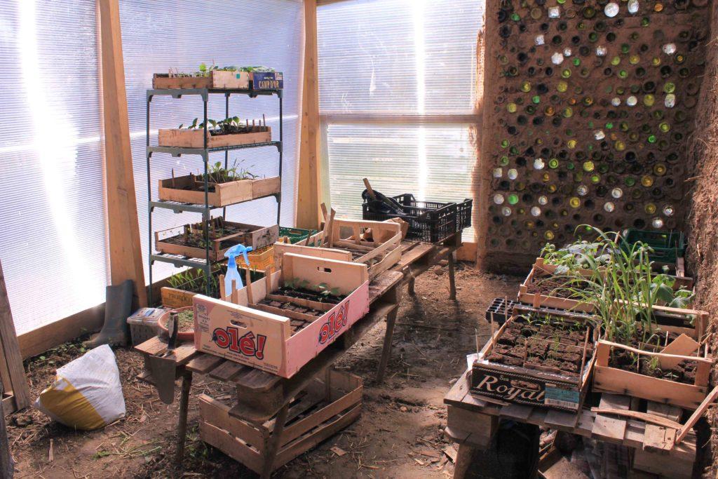 intérieur d'une petite serre bioclimatique avec un mur en bouteilles de verre et des plantes cultivées