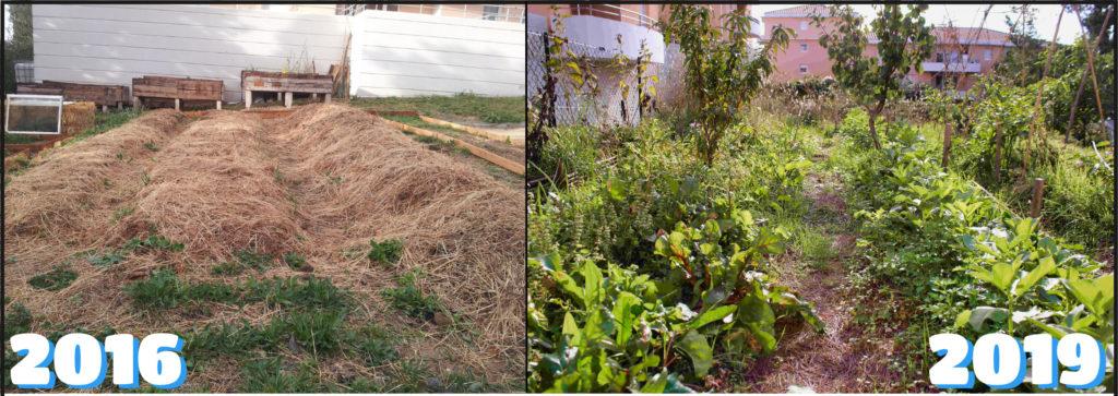 montage photo avant/après du jardin de Villamont en résidence, de 2016 à 2019