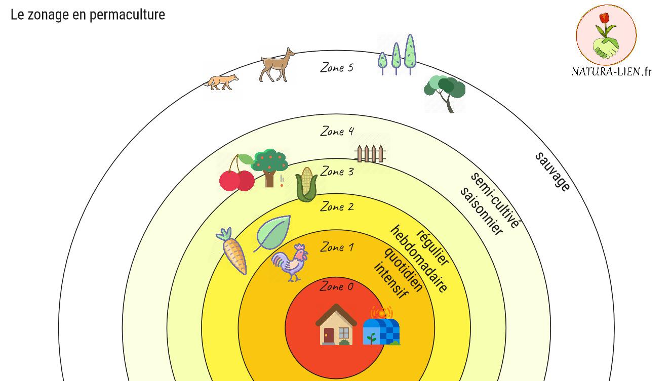 Schéma décrivant Le principe de zonage en permaculture