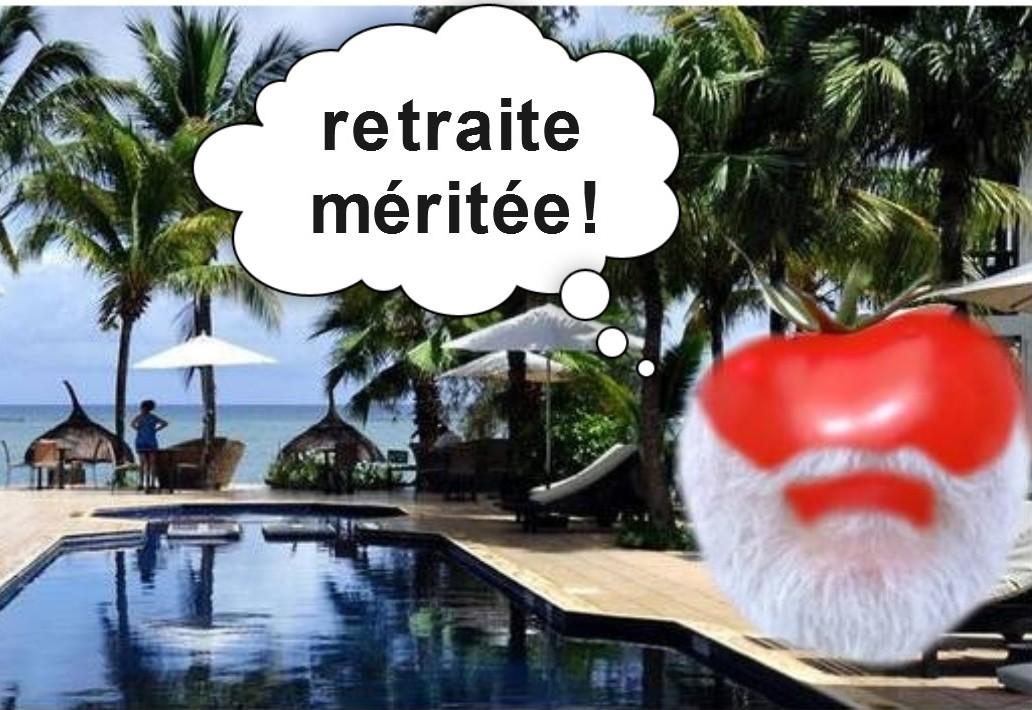 photomontage : une tomate à barbe blanche profite de sa retraite dans les caraïbes au bord d'une piscine