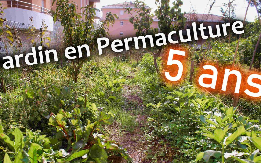 miniature photo mise en avant jardin en permaculture 5 ans
