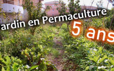 Un jardin en Permaculture 5 ans après (Vidéo)