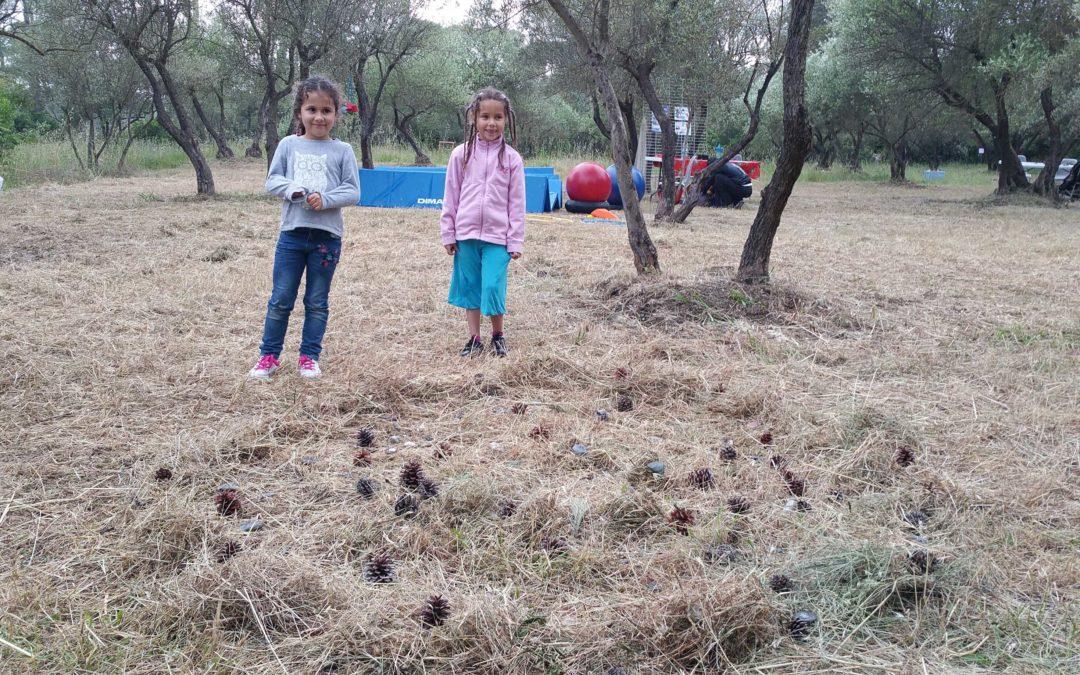 Création d'un mandala collectif avec la nature environnante
