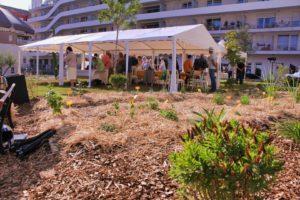 jardin potager en résidence senior