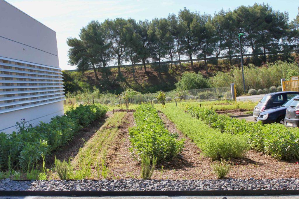 vue sur des jardins conduits de manière très organisée