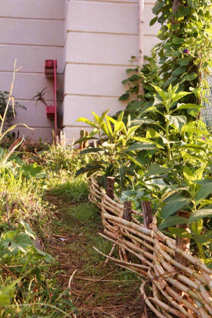 concrétisation d'un design en permaculture
