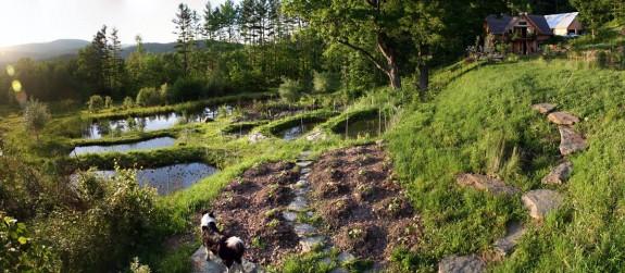 """Photo de """"Whole Systems Research Farm"""" montrant un écosystème agricole diversifié, présentant des cultures, arbres, forêts, mares communiquant entre elles."""