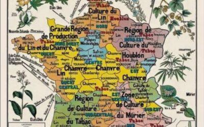 S'inspirer Du Chanvre Français Pour Faire Bouger Béziers
