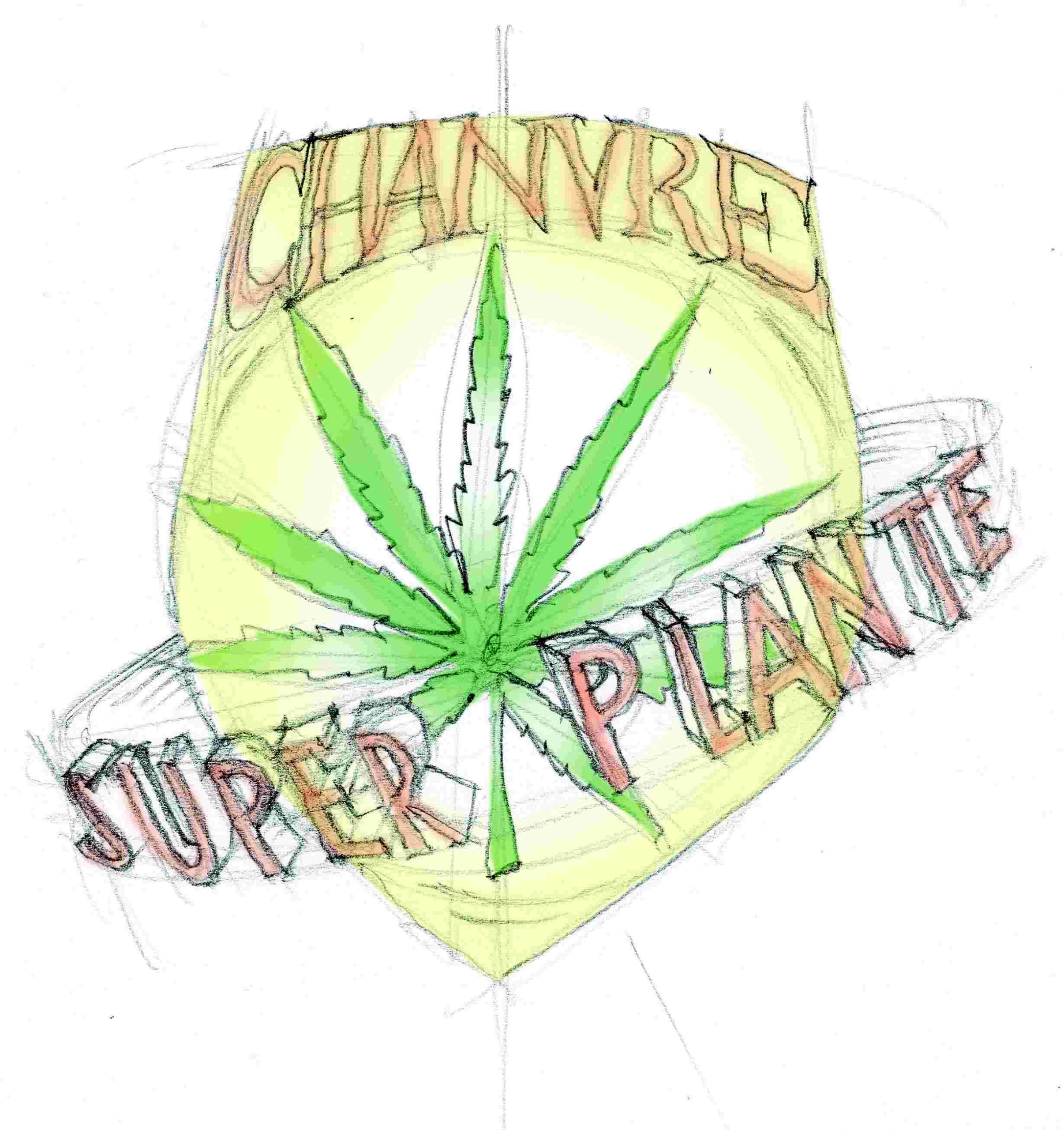 "dessin montrant un blason de héro, ""chanvre superplante"""