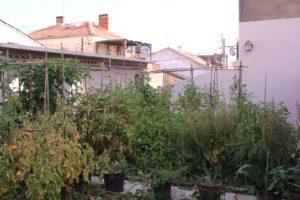 jardin en toiture d'entreprise à béziers