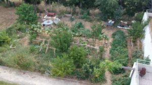 vue en drone d'un jardin partagé en résidence