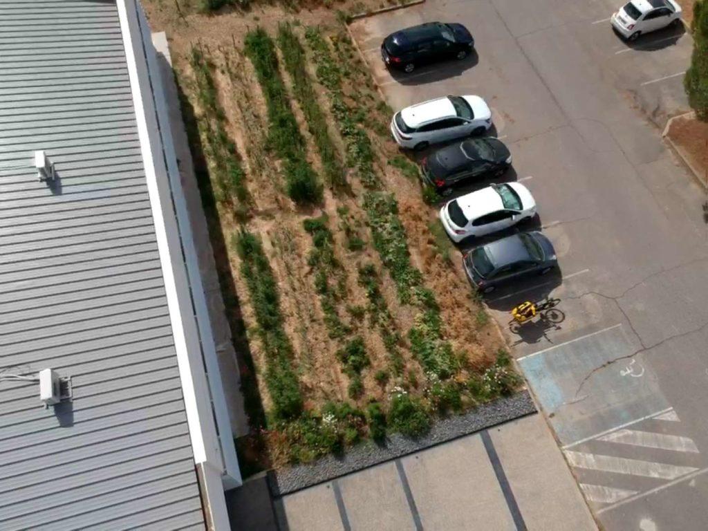 vue en drone d'un jardin potager d'entreprise
