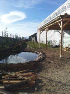 photo de la mare en cours de finition, avec l'abri terminé et les arbres plantés dans le potager d'entreprise