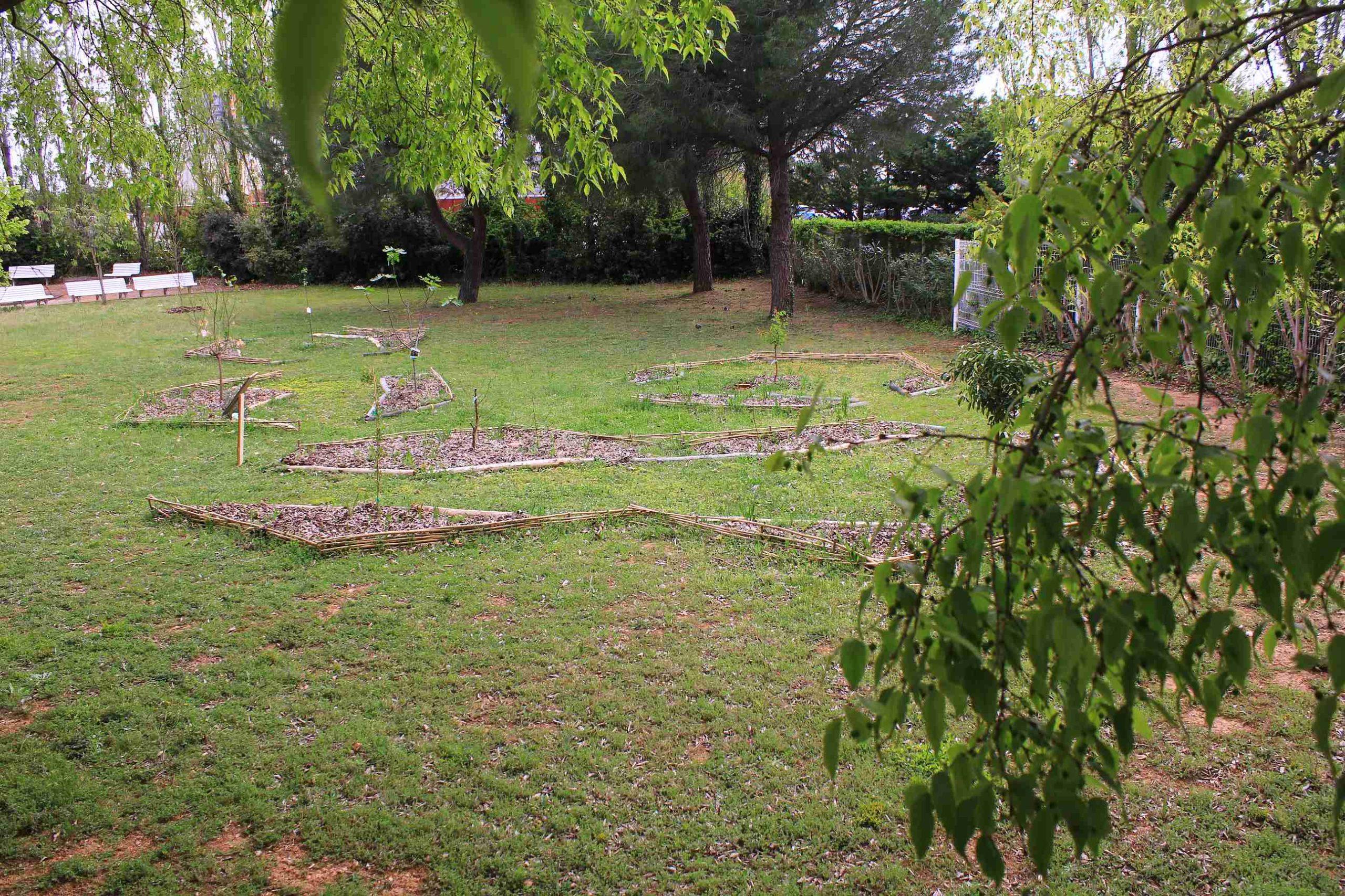 jardin nourricier en EHPAD au moment de son implantation