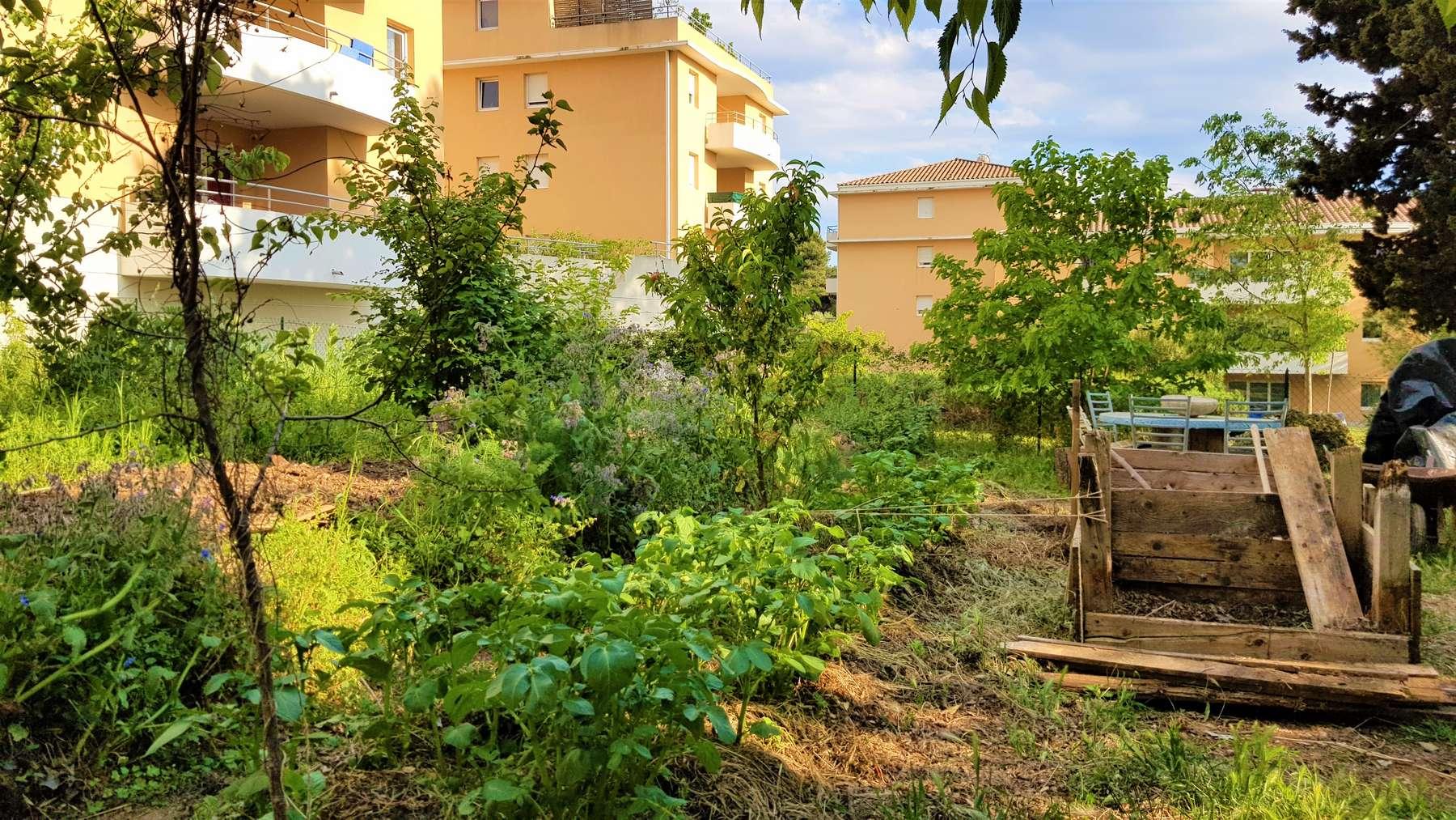 vue large du jardin de villamont, avec de nombreux arbres surplombant les cultures